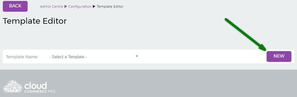 3. Dropship Template Setup - Template Editor